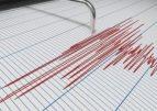 Cutremur cu magnitudinea 3,7, în judeţul Vrancea. A fost simţit până la Ruse