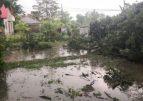 Furtuna a făcut prăpăd în judeţ. Șapte localități fac inventarul marilor stricăciuni